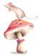 Mouse_on_mushroom