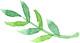 Green_leaf_small