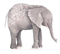 Elephant-pattern