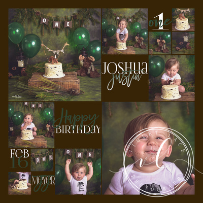 Joshua's 1 year collage